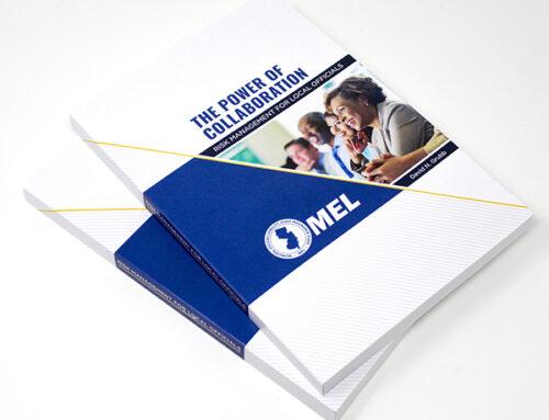MEL Risk Mgt. Manual for public officials